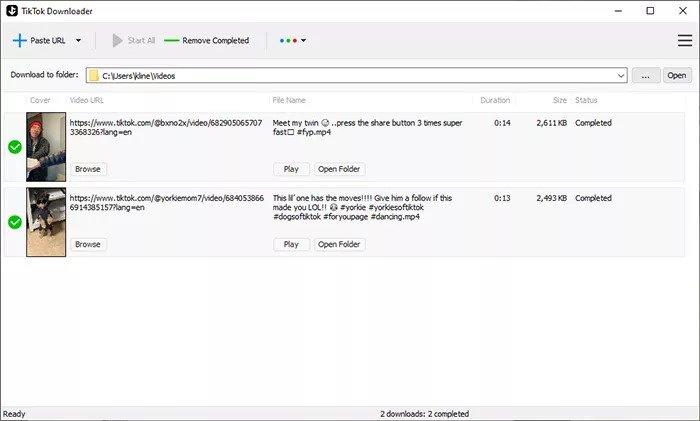 TikTok Downloader For PC